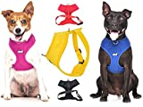 Dexil Elite Range Luxury Padded Waterproof Adjustable Back and Front Ring Non-Pull Xsmall Pet Dog Vest Harness (Royal Blue, X-Small 33-48cm Chest)
