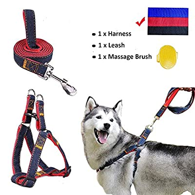 Whippy Durable Dog Leash Harness for Dogs, Heavy Duty and Adjustable Dog Harness Dog Training Leash Collar for Dogs