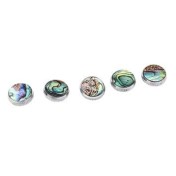 9x Sax Abalone Shell Key Buttons Saxophon Key Button Inlays Saxophon Zubehör