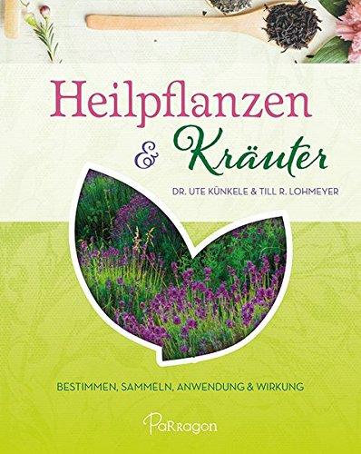 Heilpflanzen & Kräuter: Bestimmen, Sammeln, Anwendung und Wirkung