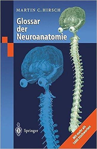 Basics Neuroanatomie Pdf