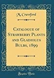 Amazon / Forgotten Books: Catalogue of Strawberry Plants and Gladiolus Bulbs, 1899 Classic Reprint (M Crawford)