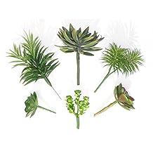 Set of 6 Different Succulents, Artificial Cactus Plants