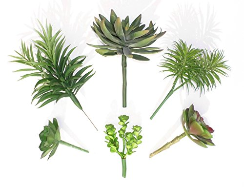 Different Succulents Artificial Neuhaus Decor product image