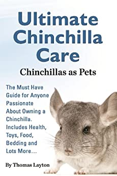 Chinchilla care - photo#28