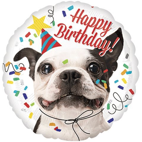 9d3c31eca4ef Amazon.com  8th Birthday Puppy Birthday Wishes Party Decorations Balloon  Bouquet Bundle  Toys   Games