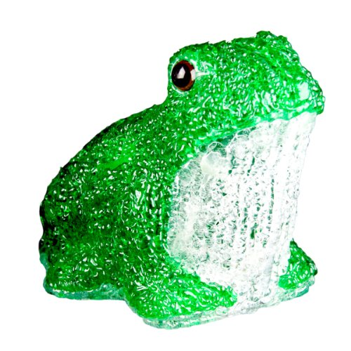 Acrylic Frog Led Light in US - 8