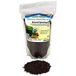 Handy Pantry Organic Broccoli Sprouting Seed -- 16 oz