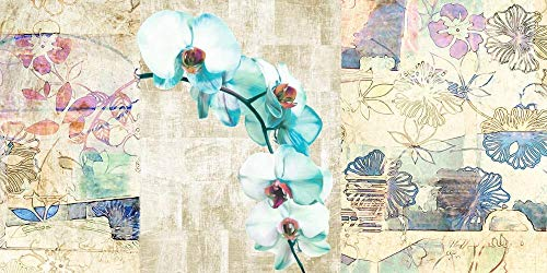 Kaleidoscope Orchid II by Kelly Parr Art Print, 24 x 12 inches