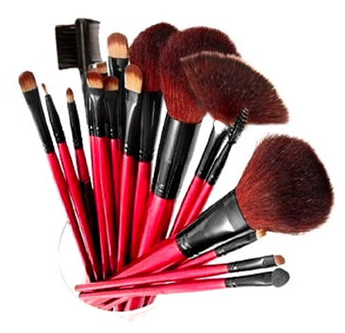 SHANY Professional 13-Piece Cosmetic Brush Set avec étui, Ensemble de 12 pinceaux et 1 Pouch, rouge