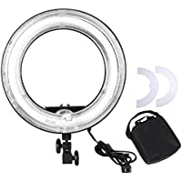 AW Professional 14 Dimmable Ring Light 45W Fluorescent Photo Video Studio Portrait Light 5500K w/Bag