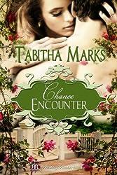 Chance Encounter (Chances of Discipline Book 3)