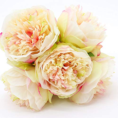 (Yunuo 1Pc 5 Heads Peony Artificial Fake Silk Flowers for Wedding Brial Bouquet Home Party Decor (Champagne))