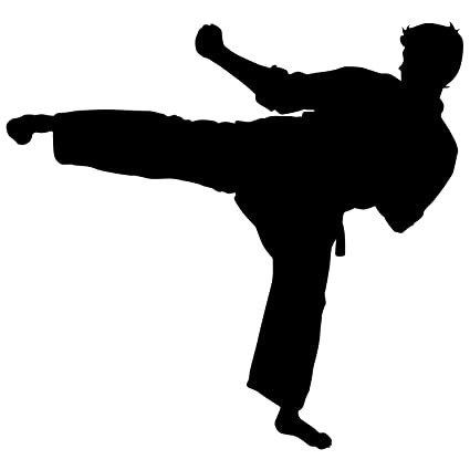 Martial Arts Wall Decal Sticker 35