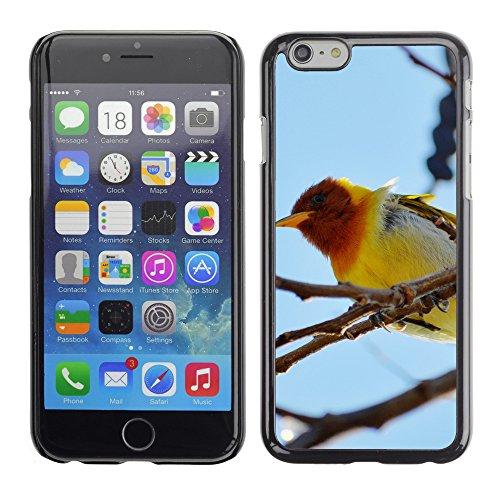 "Premio Sottile Slim Cassa Custodia Case Cover Shell // V00004052 oiseau jaune // Apple iPhone 6 6S 6G 4.7"""