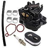 799584 Carburetor for Briggs & Stratton 09P702 9P702 550EX 625EX 675EX 725 EXI 140cc Engines Carb with Air Filter Spark Plug Kit