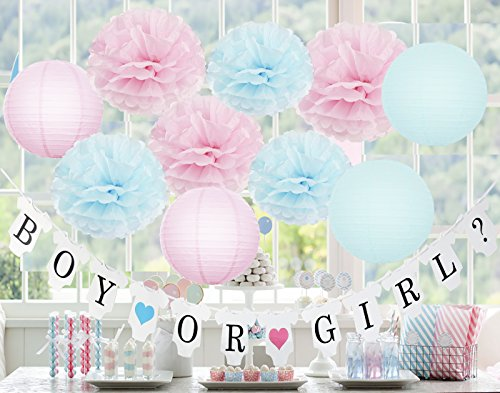 Gender Reveal Party Supplies Gender Reveal Decorations BOY OR Girl? Banner with Tissue Pom Poms Paper Lanterns Baby Blue Pink for Birthday/Pink and Blue Decorations ()