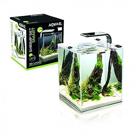 Aquael Acuario Camarón Set con iluminación LED moderna: Amazon.es: Productos para mascotas