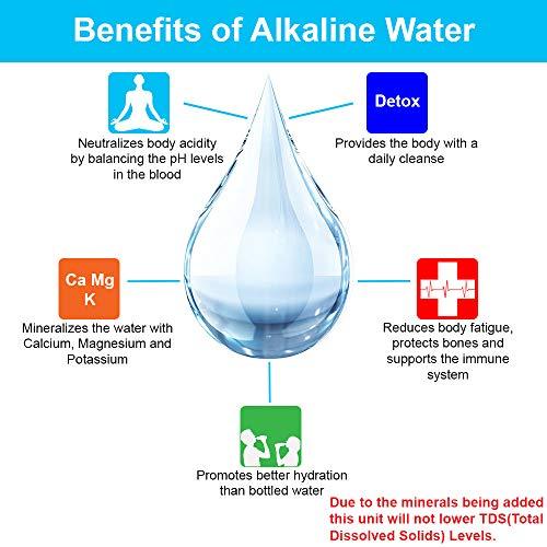 Apex Countertop Drinking Water Filter, Alkaline, Clear (MR-1050)