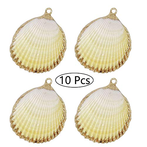 10 PCS Real Ocean Sea Shells Pendant 14K Real Gold Plated Conch Scallop Seashells Charms Bulk for Jewelry Making