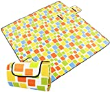 Large Picnic Blanket Tote Waterproof and Soft for Family Concerts,Beach,Park - Best Reviews Guide