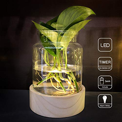 MJ PREMIER Glass Plant Vase LED Glass Flower Vase Centerpieces Hand Blown Glass Jar with Battery Operated 7 LED Timing Function Wood Tray for Festival Holiday Home Decor (Hand Glass Jar Blown)