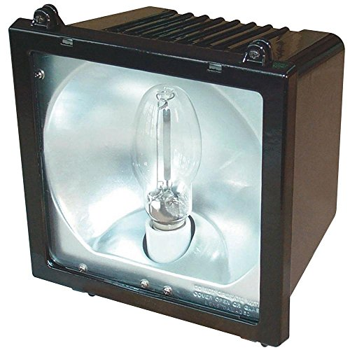 Lithonia Lighting 1 Lamp Outdoor Bronze Metal Halide Floodlight