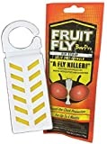 Fruit Fly BarPro 1 Strip (Single Site Treatment) Fruit Fly Killer (4 Months of Protection) - Clean and Odorless