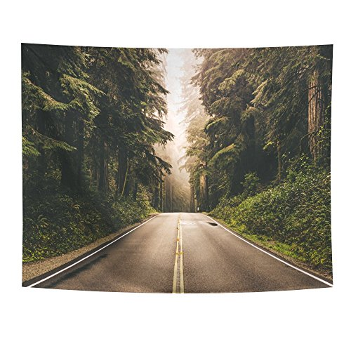 Nature Tapestry Wall Hanging by Tidy Decor, Forest Landscape with Road Sky Pine Trees Forest Summer Foggy Day Scene, Bedroom Living Room Dorm Decor, 60 W X 50 L Inches (Tapestry Landscape)