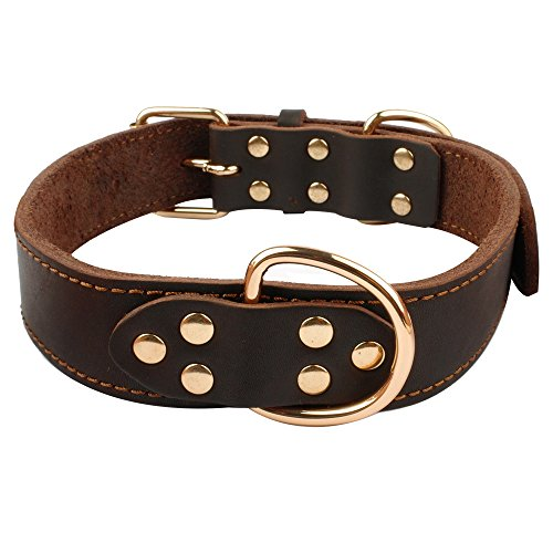 Beirui Soft Leather Dog Collar - Genuine Latigo Leather Made - Best Choice for Daily Walking or Sports Training - 18-25