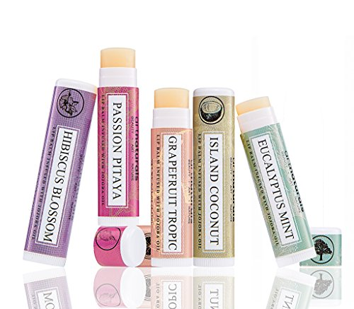 art-naturals-100-natural-lip-balm-beeswax-6-pack-assorted-flavors-015-oz-each-best-chapstick-for-dry