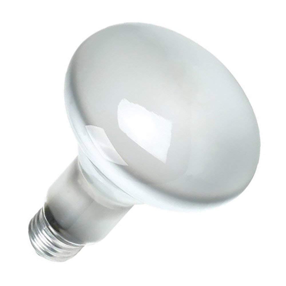 Sylvania 15160-6 120-Volt 65-Watt Flood Lamp Bulbs (6 Pack) - Incandescent Bulbs - Amazon.com