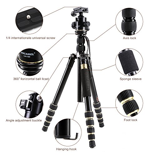 12kg Load Capacity for Canon Nikon Sony DSLR Camera K/&F Concept Professional Camera Tripod Monpod Aluminum Alloy 61.2 Compact Lightweight Travel Tripod with Ball Head and 26.46lbs Black