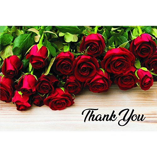 Red Roses Thank You Postcards - 4in. X 6in. (50)
