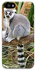 iPhone 5 iPhone 5s 3D Case,Animal-Lemur Case for iPhone 5/5s