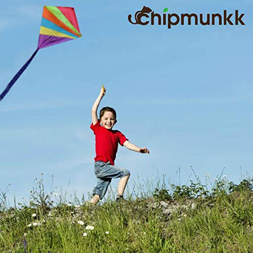 8ee4c9111 Cool Kite for Kids and Adults Easy to Fly Outdoor Summer - Import It All