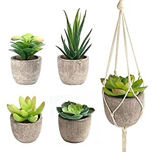 FEPITO 5 Pcs Artificial Succulent Plants with 2 Pcs Plant Hangers,Faux Succulents Artificial Large Cactus Aloe Echeveria with Gray Pots Hanging Stems Bulk for Home Indoor Decoration 3