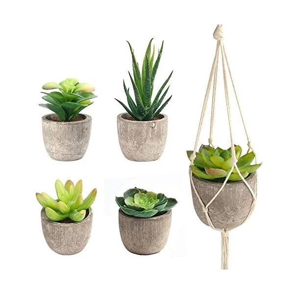 FEPITO-5-Pcs-Artificial-Succulent-Plants-with-2-Pcs-Plant-HangersFaux-Succulents-Artificial-Large-Cactus-Aloe-Echeveria-with-Gray-Pots-Hanging-Stems-Bulk-for-Home-Indoor-Decoration
