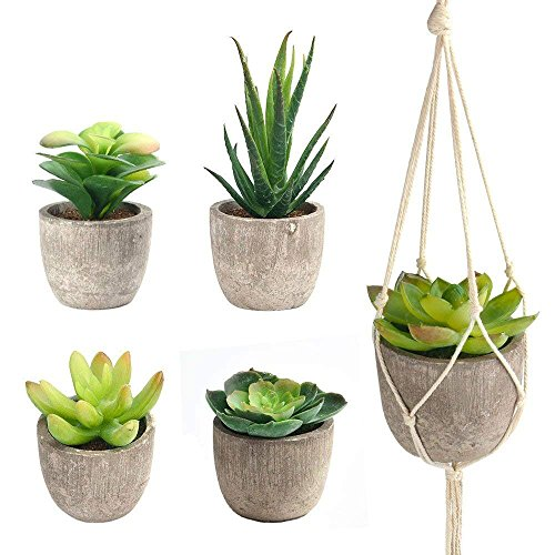 FEPITO 5 Pcs Artificial Succulent Plants with 2 Pcs Plant Hangers,Faux Succulents Artificial Large Cactus Aloe Echeveria with Gray Pots Hanging Stems Bulk for Home Indoor Decoration (Indoor Hanging Artificial Plants)