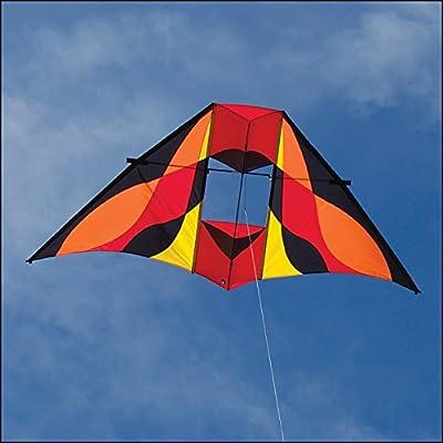 Into The Wind Rocky Mountain Delta Conyne Kite Dawn: Toys & Games