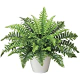 光触媒 人工観葉植物 光の楽園 ボストンファン 387A50