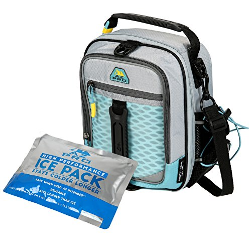 Arctic Zone 1349AMAAB2B2 Insulated Lunch Pack, 8