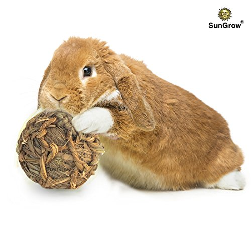 SunGrow Natural Seagrass Ball - Perfect & Safe Chewable Teething Toy for Rabbits, Cats, Hamsters, Gerbils & Birds : Healthy for Your Pets Gums & Teeth