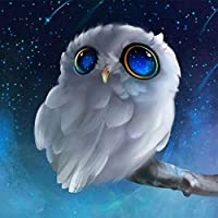 Pandaie New 5D Diamond Painting Kit -White Owl- DIY Crystals Diamond Rhinestone Painting Pasted Paint by Number Kits Cross Stitch Embroidery Decor Wall Stickers & Murals Bedroom-Partial