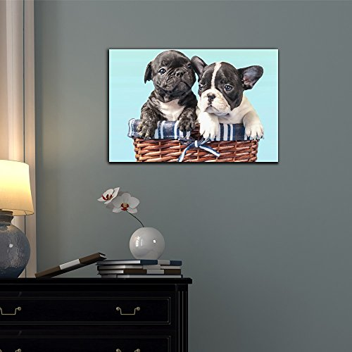 Dogs Breeds French Bulldog Puppy Pet Art for