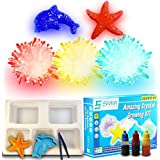Crystal Growing Kit For Kids - Evviva Sciences – Science Kit To Make & Grow Rocks, Crystals, Gems – Easy All Inclusive Set – Chemistry, Geology & Learning Experiment Toy – w/ eBook