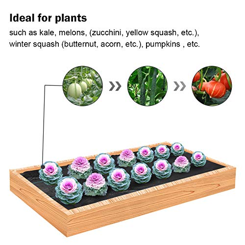 Agfabric Easy-Plant Weed Block for Raised Bed Outdoor Garden Weed Rugs Garden mat 3.0oz, 4'x12',with Planting Hole Dia 6