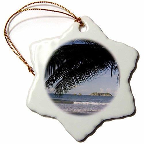 Palm Tree Porcelain (3dRose orn_84238_1 Beach Palm Tree, Manuel Antonio, Costa Rica NA02 RNU0092 Rolf Nussbaumer Snowflake Ornament, Porcelain, 3