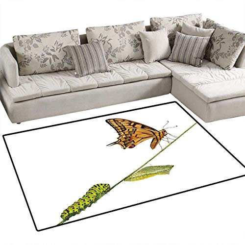 Swallowtail Butterfly Bath Mats Carpet Caterpillar Pupae Butterfly Lifes Stages Inspirational Nature Door Mats for Inside Non Slip Backing 40