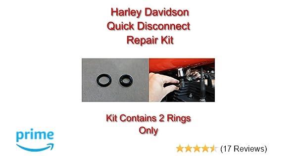 Ansaug- & Kraftstoffsysteme Sonstige Harley Davidson Viton Repair ...